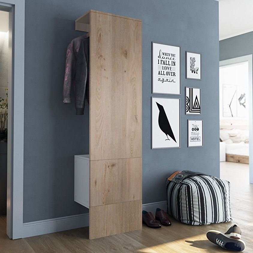 Single panel furniture set with hanging rail and cupboard